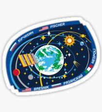 Expedition 52 - The Logo of the Actual Crew Sticker