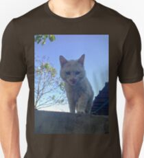 Cute Cat on a Ledge T-Shirt