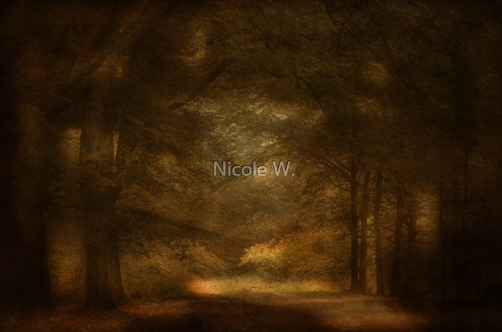 Light at the end by Nicole W.