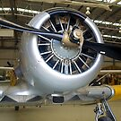 The Business End, Wirraway (Harvard), Tyabb, Victoria. by johnrf
