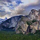 Zugang zum Yosemite Valley von Nancy Richard