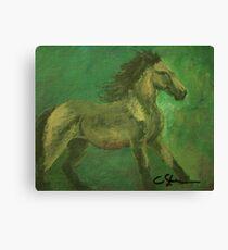 A Quick Horse AC160916a Canvas Print