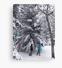 Walking in a Winter Wonderland - Blue Jays and Hikers Snowy Landscape Canvas Print