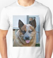 ACD red merle T-Shirt