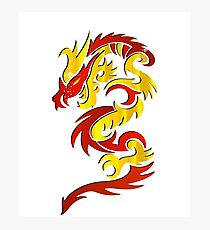 Red Yellow Dragon  Photographic Print