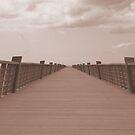 The boardwalk by DES PALMER