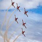 Fancy Flying by Mark Hamilton