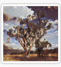 Australian Windswept Tree 01 Sticker