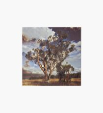 Australian Windswept Tree 01 Art Board Print