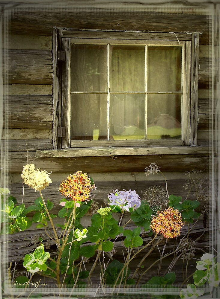 Window to the Past by Kenneth Hoffman