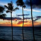 Sunset Over Maui by Lori Peters