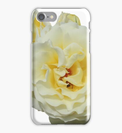 Creamy Roses iPhone Case/Skin