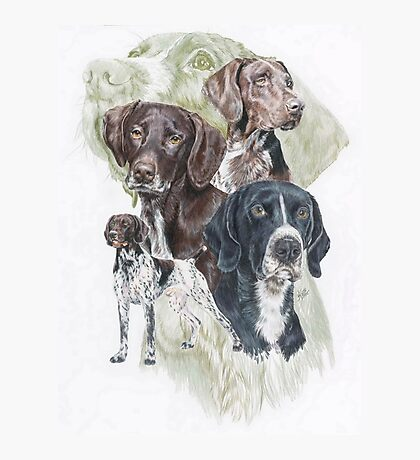 German Short-Haired Pointer /Ghost Photographic Print