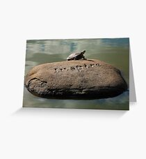 Inspire - Turtle Sunning Itself Greeting Card