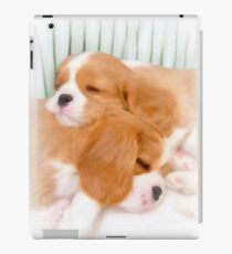 Cavaliers - Enjoying Their Nap iPad Case/Skin