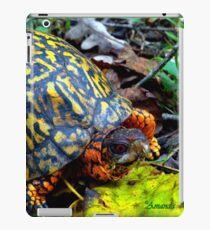 Colorful Box Turtle iPad Case/Skin