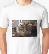 AS red merle sleeping second Unisex T-Shirt