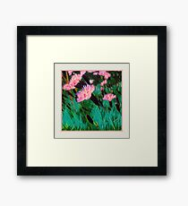 Pretty Pink Flower Original Art Framed Print