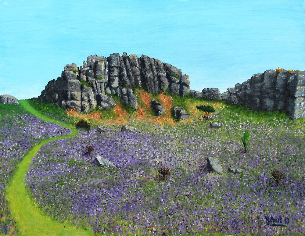 Dartmoor bluebells by Richard Paul