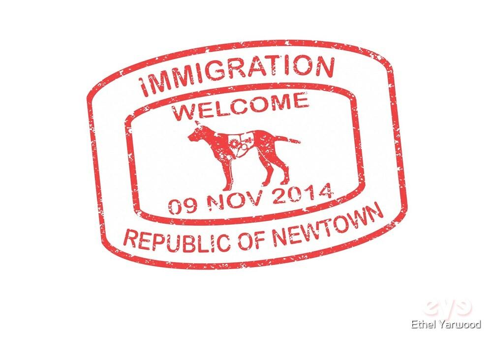 Republic of Newtown - 2014: Red by Ethel Yarwood