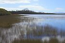 Tasmania, Melaleuca Lagoon by Carole-Anne