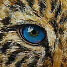 Leopard Eye by Michael Creese
