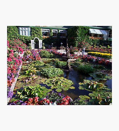 Italian Garden at the Butchart Gardens Photographic Print
