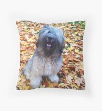 Tibetan Terrier in Autumn Leaves Throw Pillow