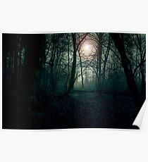 Dark landscape with forest. Evening in the forest, the setting sun through the trees Poster
