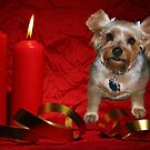 A Puppy Merry Christmas by Rick  Friedle