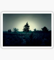 Atmospheric and dark image of the field and trees Sticker