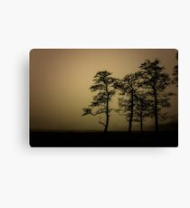 The dark trees at the forest edge. Sepia dark background Canvas Print
