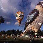 Kookaburra Balloon,Australia Day,Parramatta Park,2005 by muz2142