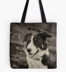The world's friendliest sheep dog Tote Bag