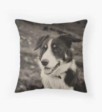 The world's friendliest sheep dog Throw Pillow