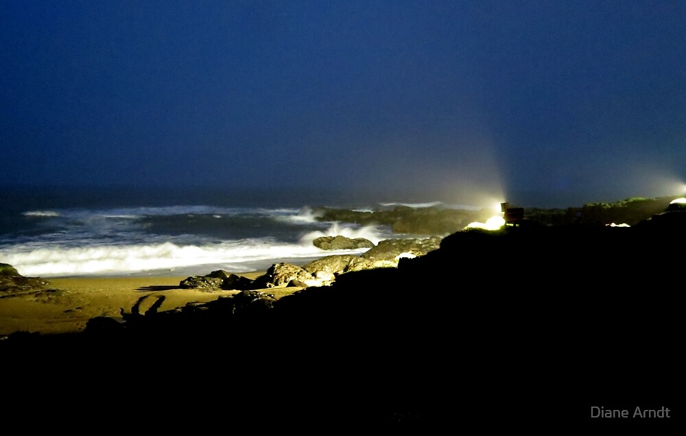 All Lit Up...Yachats, Oregon by Diane Arndt
