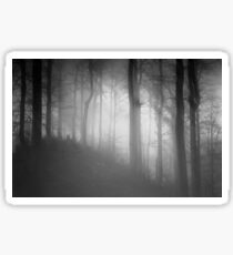 Dark black and white forest with a mysterious mist Sticker