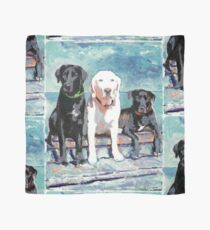 Three Labrador Retriever Dogs Scarf