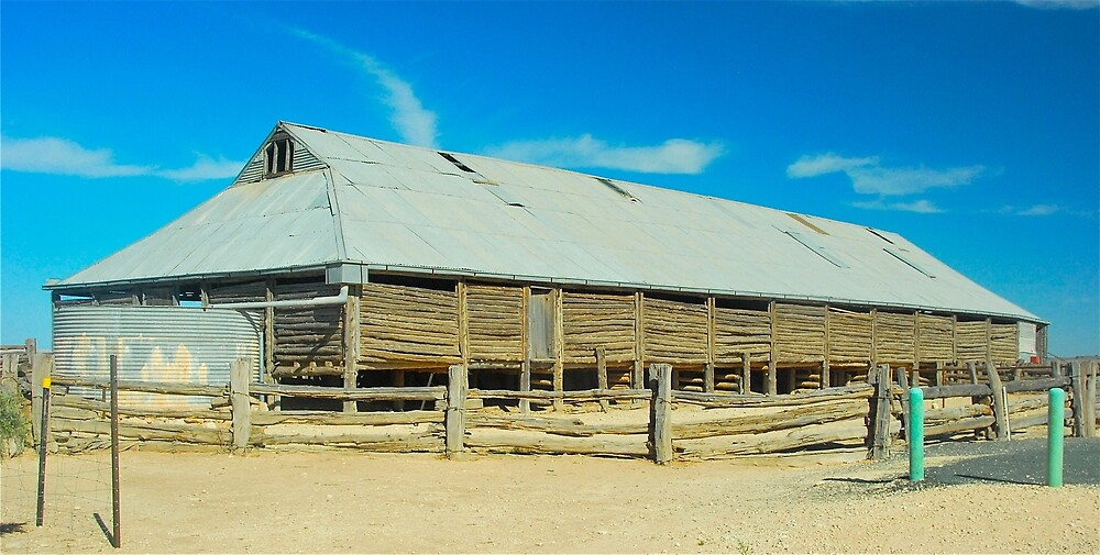 Mungo Woolshed # 2 by Penny Smith