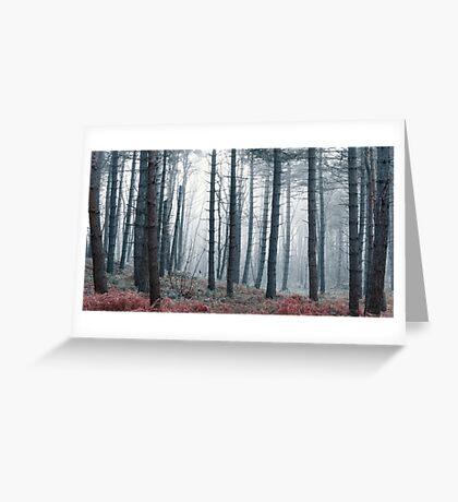 Hazy Forest Greeting Card