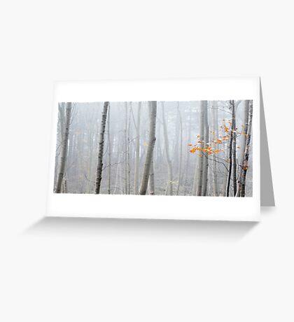 Last Autumn Branch Greeting Card