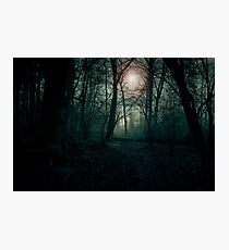 Dark landscape. Forest in the fog illuminated by the setting sun Photographic Print