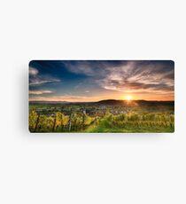 Warm Autumn Sunset on Vineyard Canvas Print