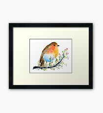Watercolor Robin and Berry Branch  Framed Print