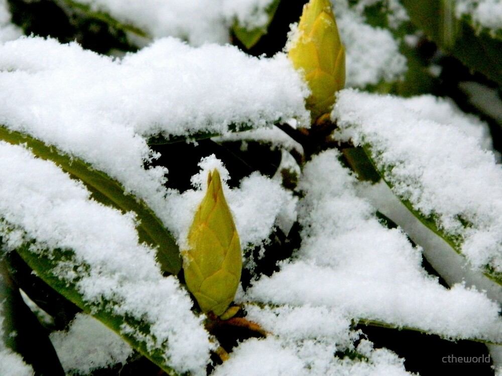 Rhodos in the Snow   ^ by ctheworld
