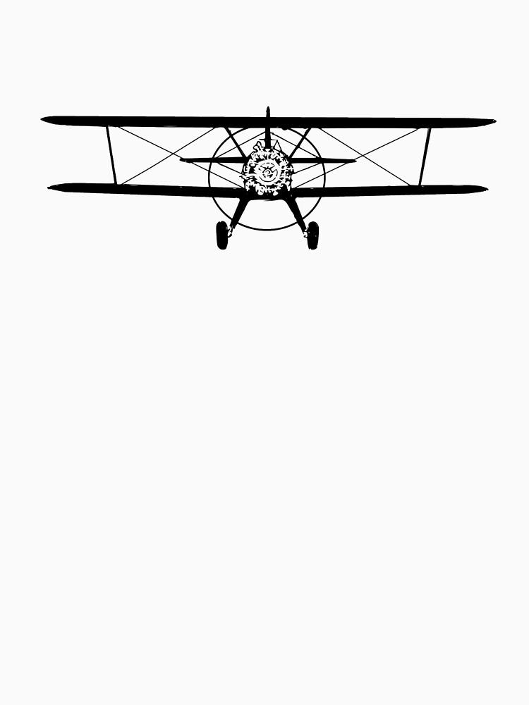 Stearman Biplane Head-On by cranha