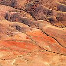 South Australian Outback by Geoffrey Higges