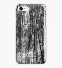 Pine pattern - photograph iPhone Case/Skin