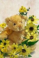 Teddy Bear - Yellow Toto Lemon Rudbeckia by Sandra Foster