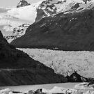 Skaftafell Glacier in Mono by Cliff Williams